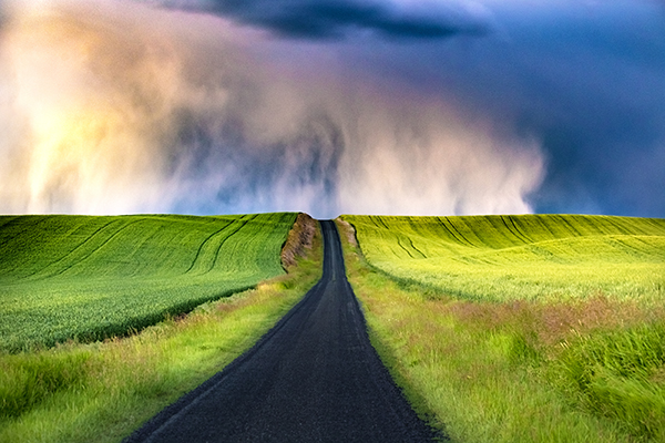 The Palouse on a stormy evening. Rural Photography.