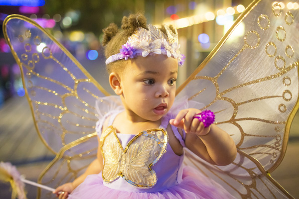 The cutest butterfly in town!